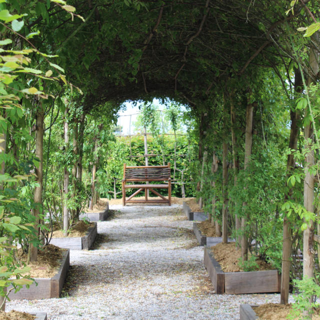 Jardin Medieval Cdma (25)