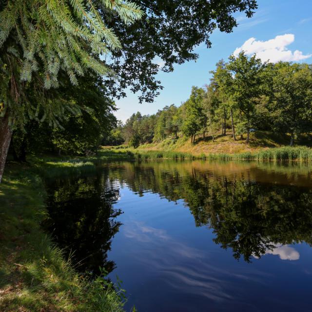 Lapleau Plan D'eau Du Vendahaut 2016 (3)
