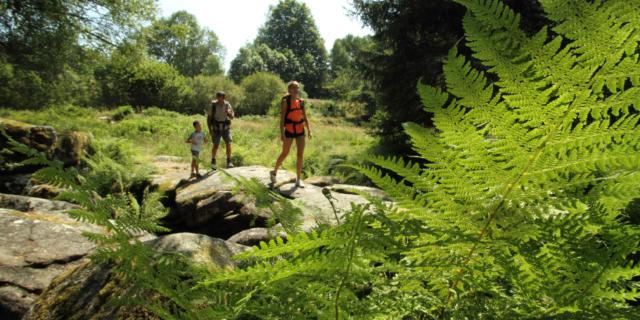 Randonnee Plateau Millevaches Famille