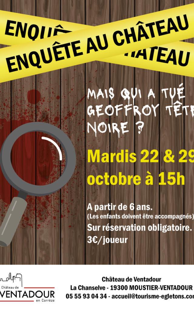 Affiche Enquete Au Chateau